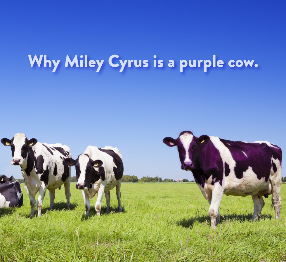 figism-purple-cow